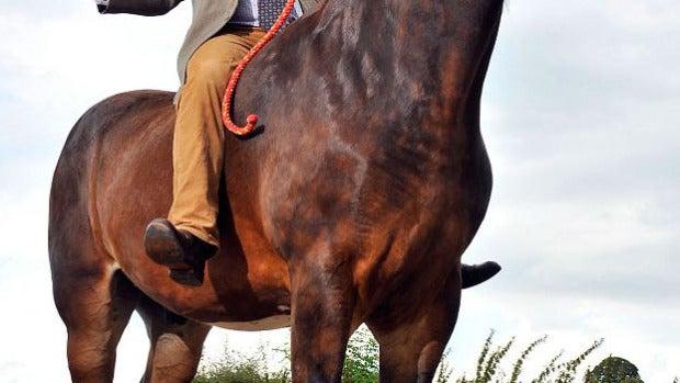 El caballo más grande de Europa