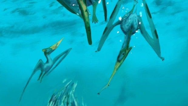 Un ptenarodon pescando
