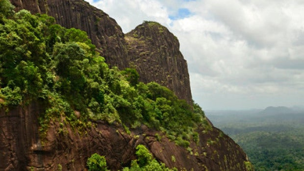 Montañas de Surinam