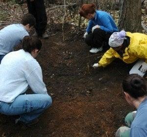 Granja de cadáveres de Tennessee