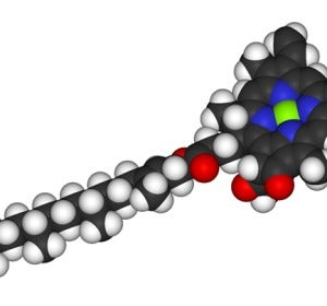 Estructura molecular de la clorofila