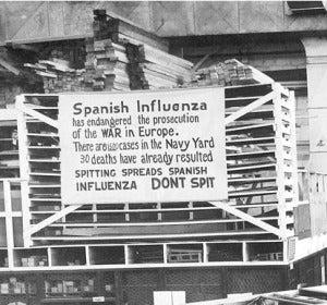 Gripe española 3