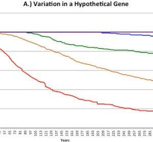 Estimación de supervivencia para los distintos grupos de población en una supuesta colonización