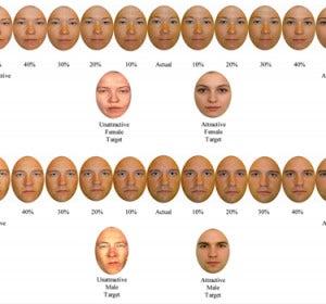 Muestra de la manipulación de imágenes que hicieron los investigadores