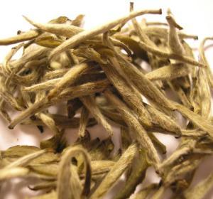 Brotes de té blanco con su característico aspecto peludo