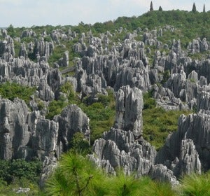 Bosque de piedra de Shilin (China)