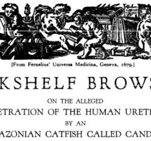 Artículo publicado en 1930