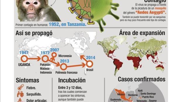 Gráfico zika