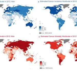 En azul incidencia y en rojo mortalidad del cáncer, según GLOBOCAN 2012. A la izquierda hombres y a la derecha mujeres