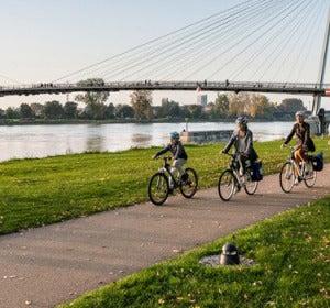 Cicloturismo en el Rin