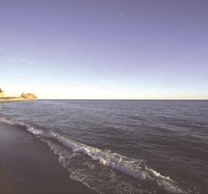 Playa de la Araña