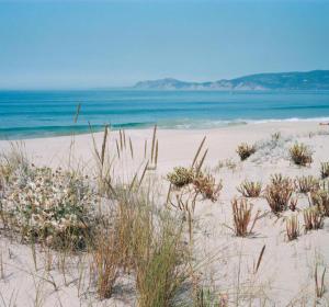 La playa en Comporta
