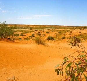 Al interior de Australia se le conoce como Outback