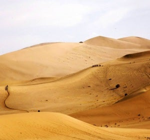 Desierto del Karakum (Turkmenistán)