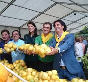 Limones solidarios