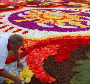 Preparación de la alfombra en la edición de 2014