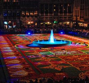 La impresionante alfombra de 2014