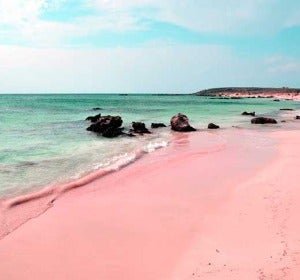 Pink Beach, en Bahamas