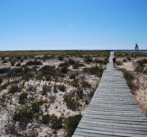 Ilha Deserta, una playa genial en el Algarve