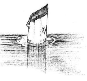 Dibujo del tronco publicado junto a un estudio sobre las corrientes del lago del Cráter en 1938.Dibujo del tronco publicado junto a un estudio sobre las corrientes del lago del Cráter en 1938.