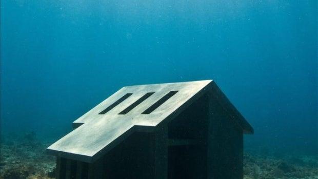 El 'hogar' de los peces del mar Caribe