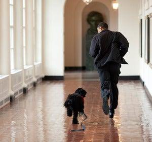 El presidente de EEUU corre por la Casa Blanca con su perro