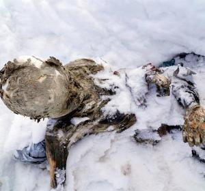 Cuerpo momificado de un hombre