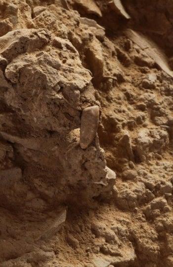 El hallazgo se produjo en llamada Caune de l'Arago de Tautavel, una gruta situada en un valle cortado por un cañón por donde pasa el río Verdouble y donde se habían encontrado bastantes objetos datados en el Paleolítico Inferior.