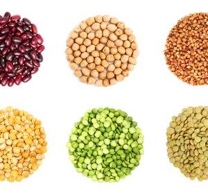 ¿Por qué es importante incluir legumbres en la dieta?