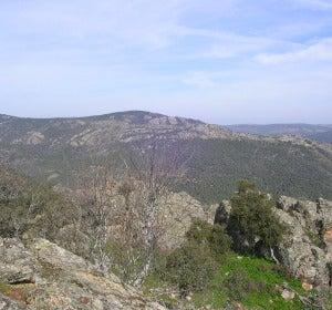 Diez lugares para ver la Berrea