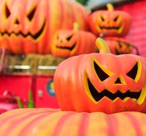 Una imprescindible en las fiestas de Halloween