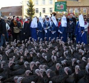 Desfile de pavos en Licques, al norte de Francia