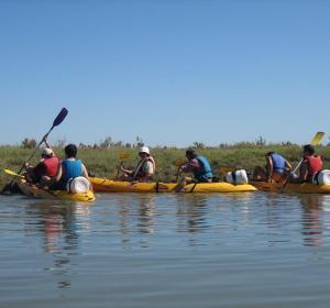 Káyak en las marismas de Isla Cristina