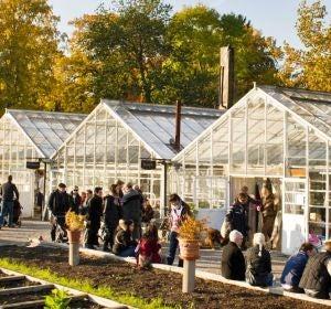 Rosendal Trädgård