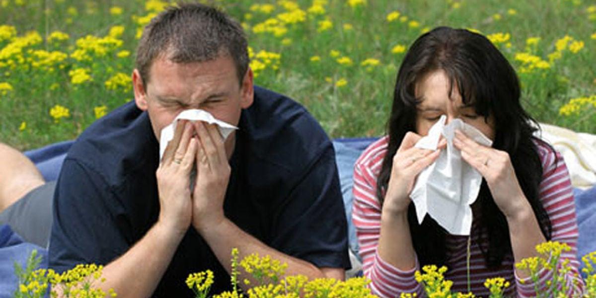 La alergia al polen, cada vez más extendida