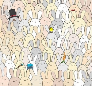 Huevo entre conejos