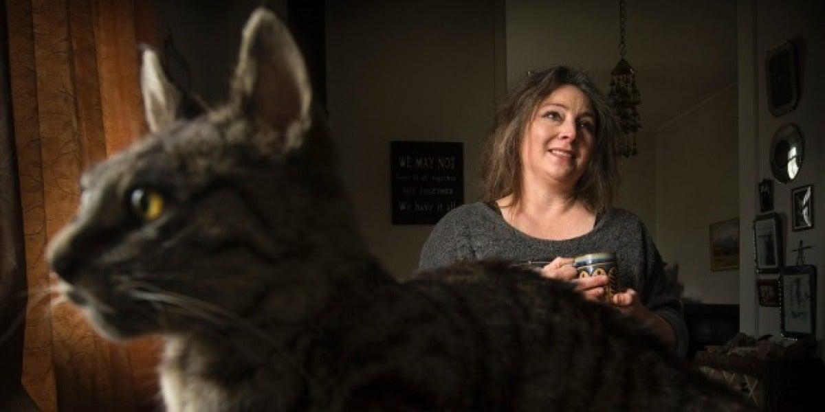 Clare Hobbs, la taxidermista que ha creado el bolso hecho de gato