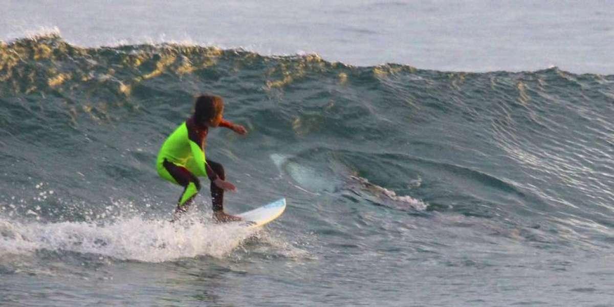 Surfeando junto a un tiburón blanco