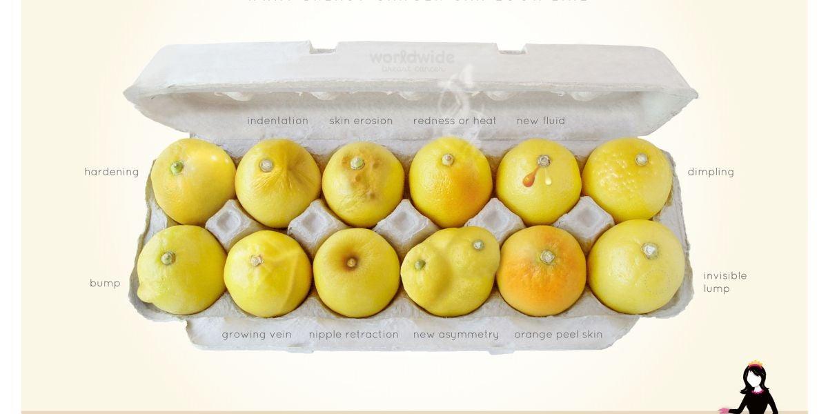 Conoce tus limones