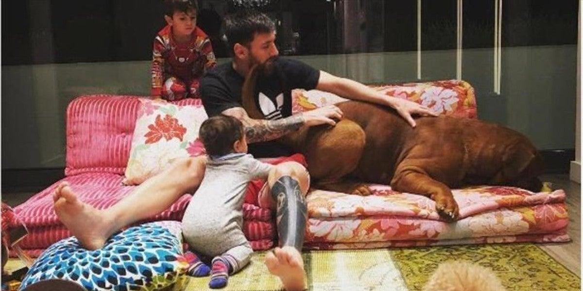 Messi disfrutando de su familia en casa