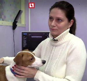 La dueña junto al perro