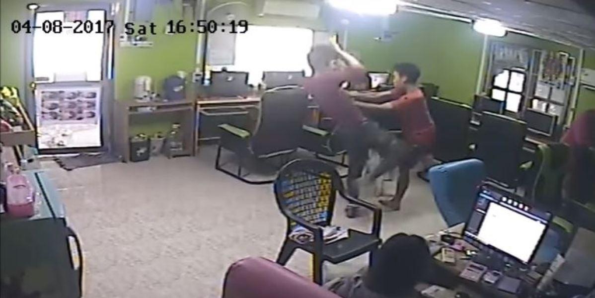 Una serpiente ataca a un joven en Tailandia