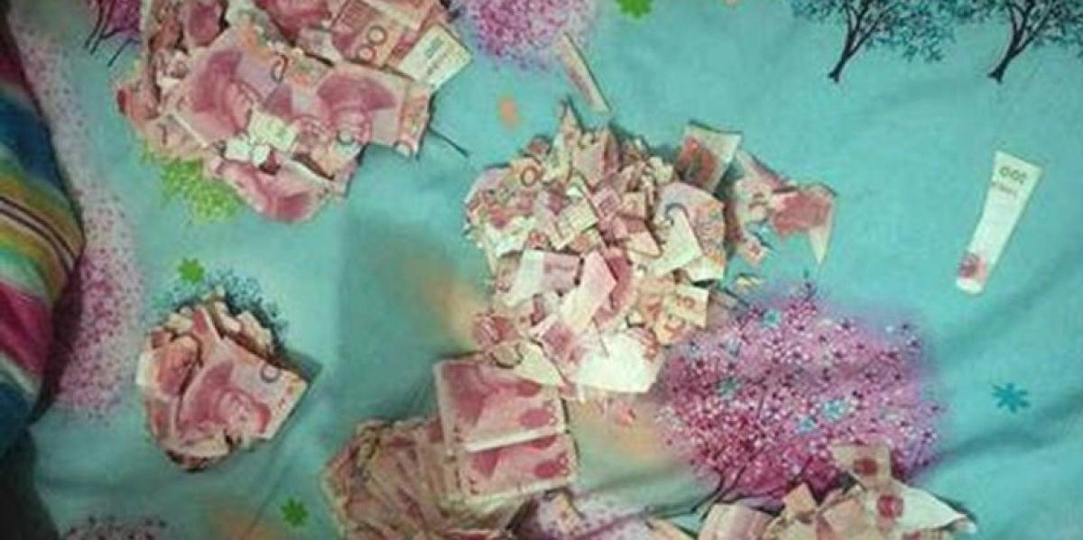 Los pedazos de los billetes