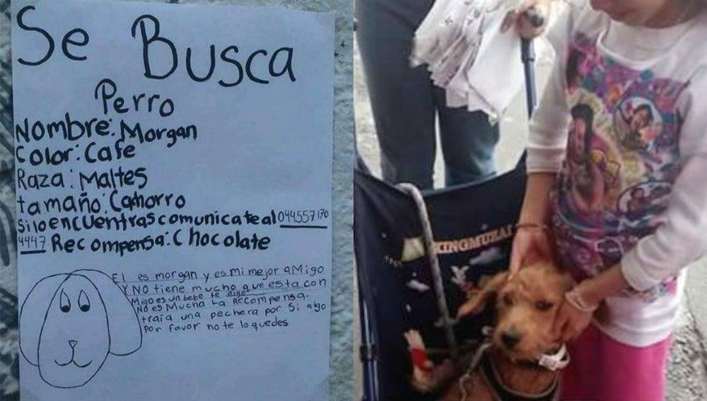A la izquierda el cartel de 'se busca' de Morgan, a la derecha el animal junto a su dueña