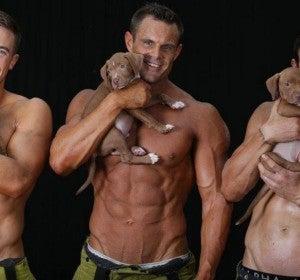 Calendario solidario de los bomberos australianos 2018