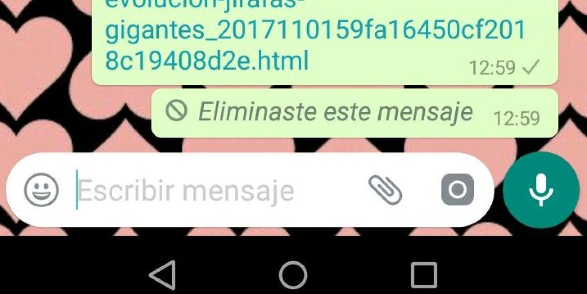 Borrar los mensajes en whatsapp falla