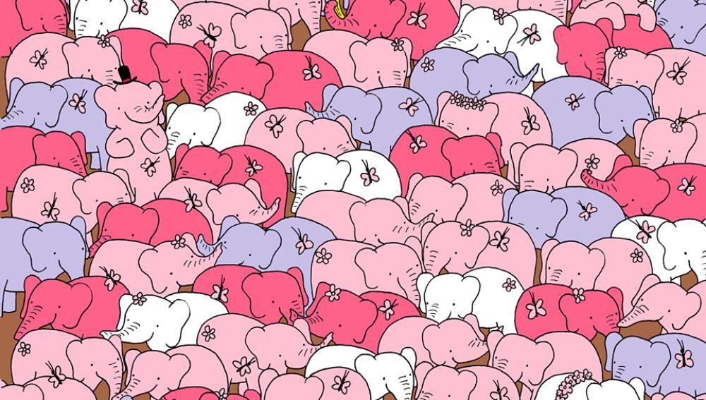 ¿Encuentras el corazón entre los elefantes?