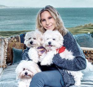 Barbra Streisand posa junto a sus tres mascotas