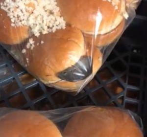 Un ratón dentro de una bolsa de pan de hamburguesa