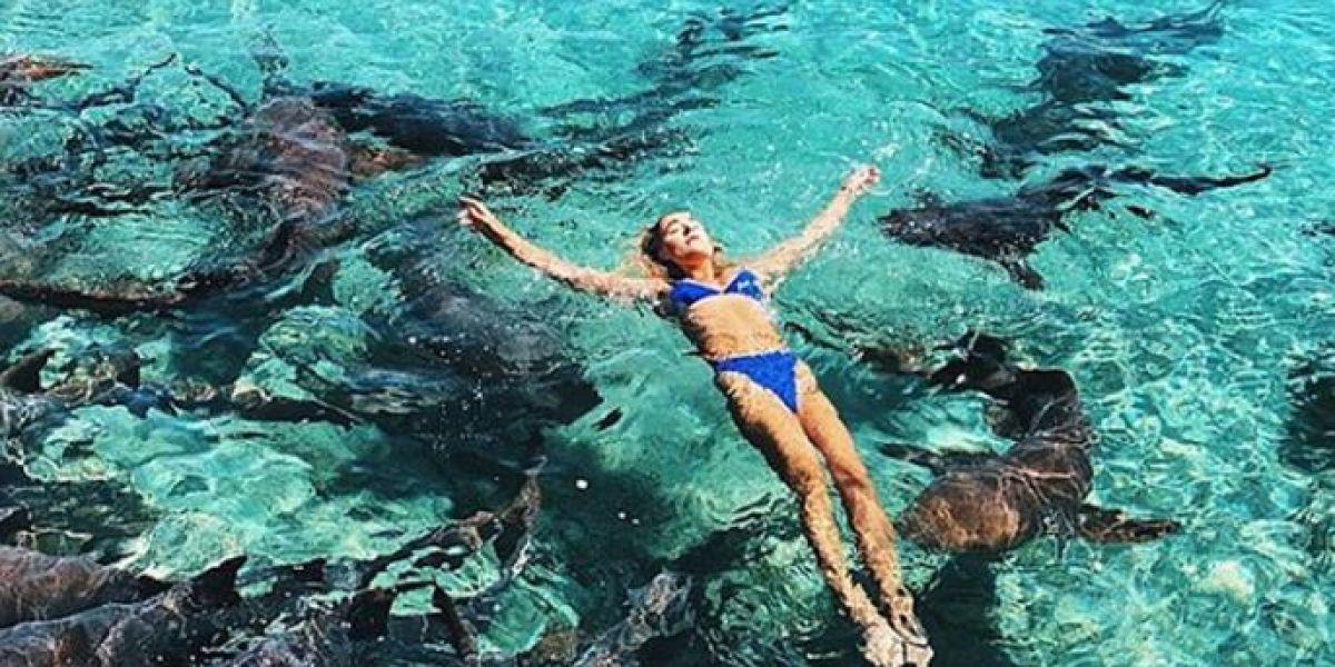 Un tiburón ataca a una instagrammer cuando intentaba sacar la foto perfecta